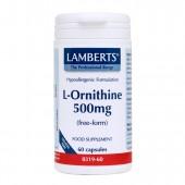 Lamberts® L-Ornithine 500mg (60 Capsules)