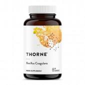 Thorne Bacillus Coagulans (60 Vegetarian Capsules)